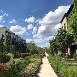 Downtown Brambleton Landscaping