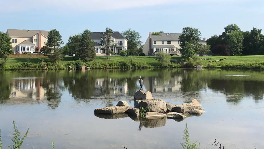 Brambleton Single Family Home Views